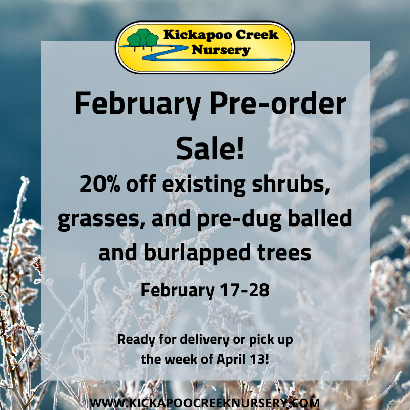 Feb Preorder Sale 2020(1)