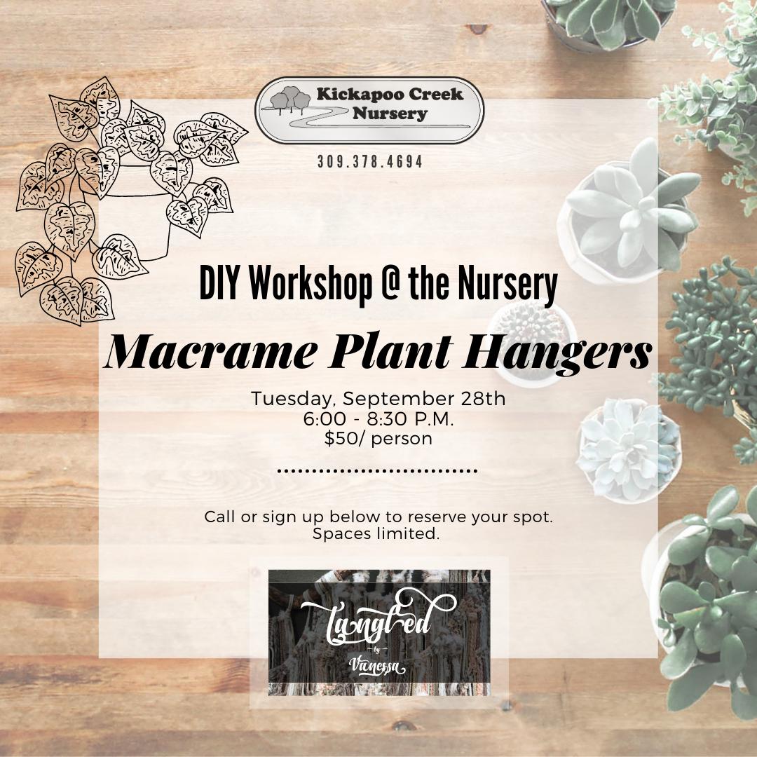 INSTA DIY - MACRAME PLANT HANGER