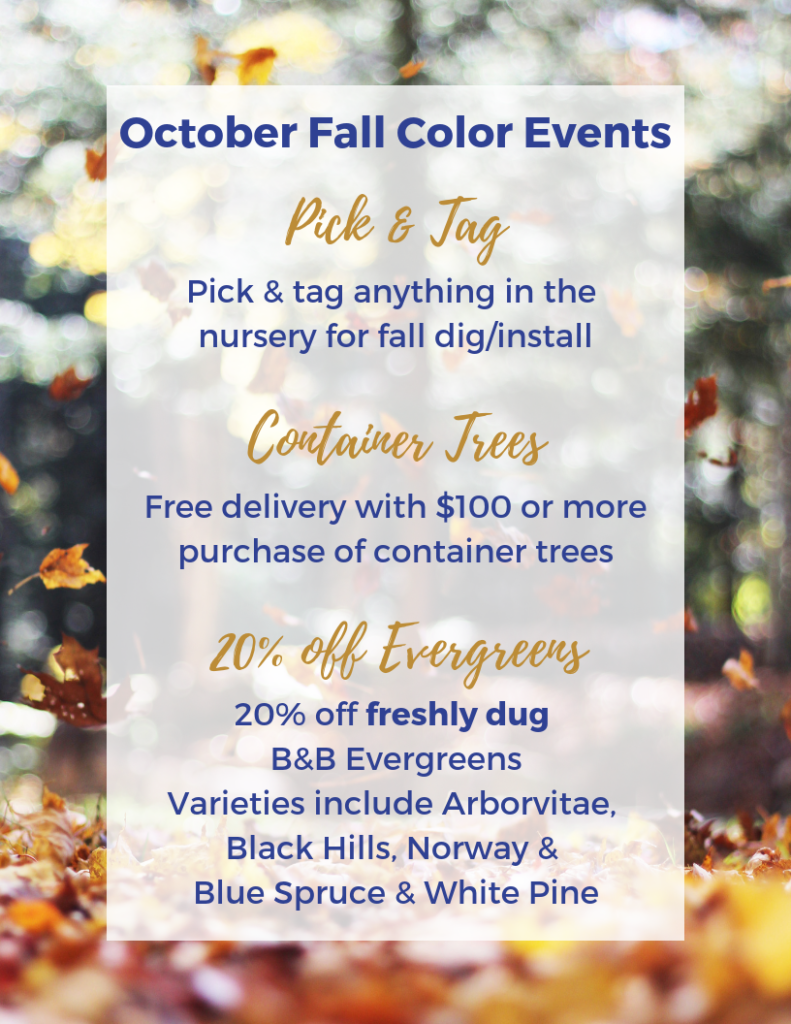 October Fall Color Events Flier PNG