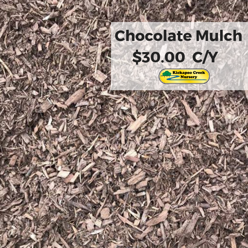 Chocolate Mulch (1)